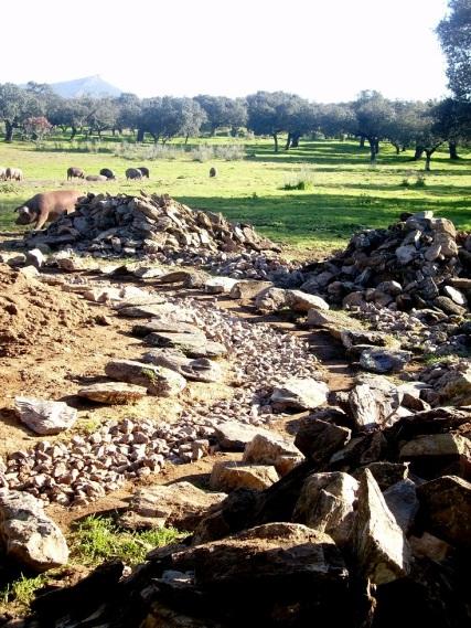 Cimientos de piedra seca